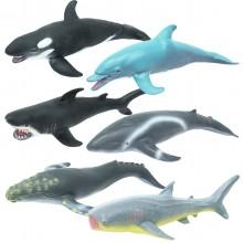 Soft Vahşi Okyanus Canlıları